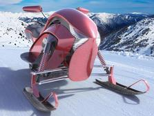 Izulu Snowmobile